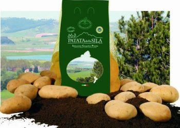 Patata_Sila_IGP