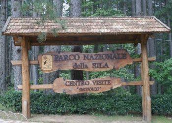 parco-nazionale-della-sila-1